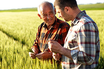 Personal, Business, Agriculture, and Home Loans