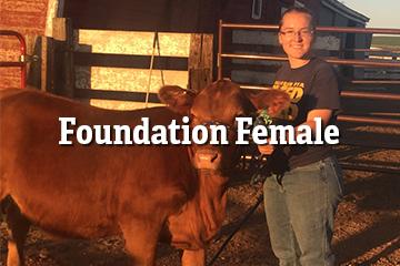 Foundation Female Program