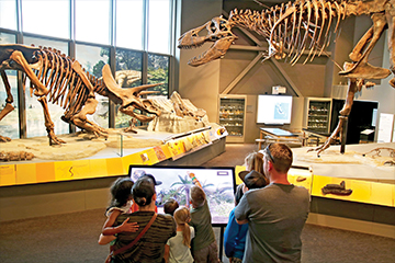 Dino-Interactive-with-Visitors-reduced